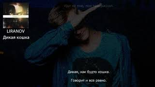 LIRANOV - Дикая кошка (ТЕКСТ ПЕСНИ)