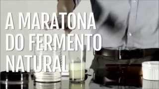 levian-fermentao-natural