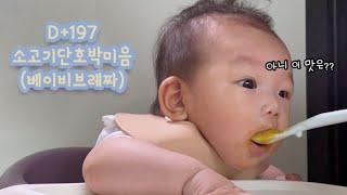 이유식|소고기단호박미음, 베이비브레짜이유식마스터기, 베…