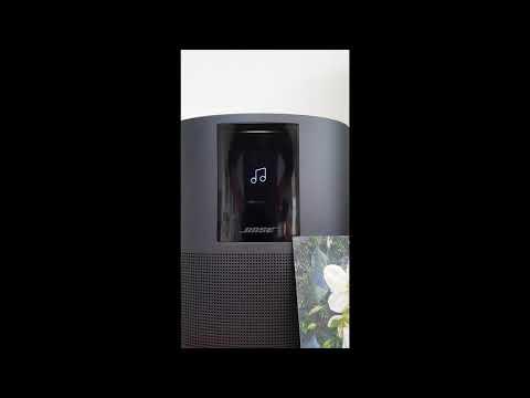 Video 27dec 12h27