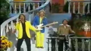 Die Flippers - Bye Bye Belinda