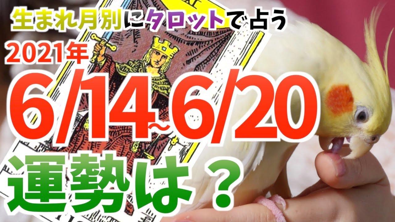 6/14〜6/20の運勢・メッセージを生まれ月別に占う!【タロット占い】