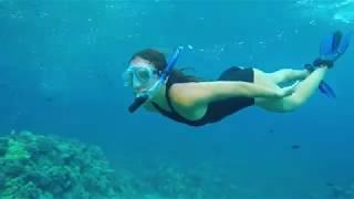 하와이주 마우이: 라하이나의 경이로운 자연