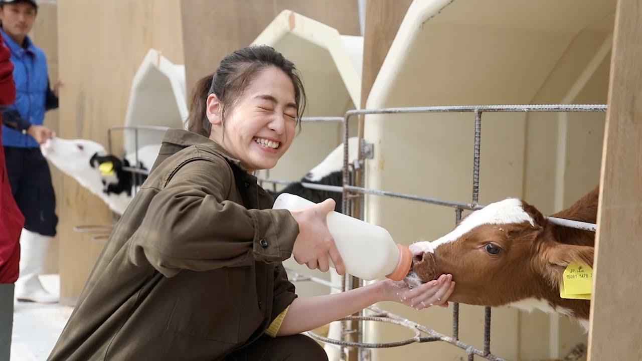 020 牛の赤ちゃんにミルクあげてみた~北海道は牧場日和~