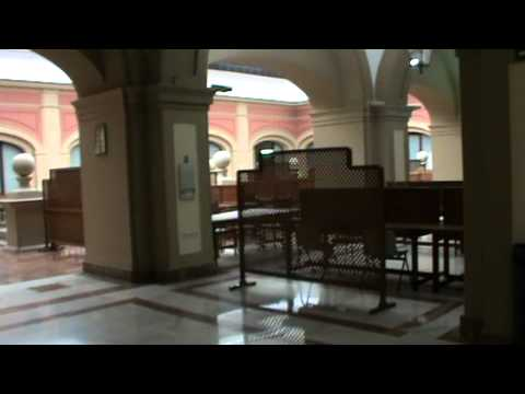 University of Seville (Spain) - An Insight