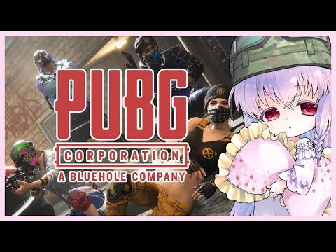 【テスト配信 #PUBG】YouTubeとTwitchで画面構成変えてみるテスト【夢乃名菓の夢の中】 #Vtuber