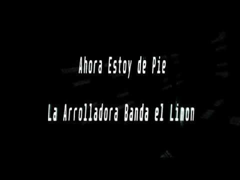 Karaoke-Ahora Estoy de Pie-La Arrolladora Banda el Limon