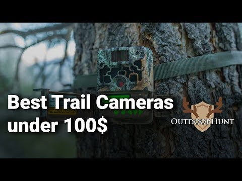 best-trail-cameras-under-100$:-complete-list-with-features-&-details---2019