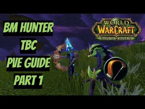 Стрелы, лук и верный друг! | БМ Охотник ПВЕ Гайд | BM Hunter PVE Guide | WoW Burning Crusade(TBC) №1