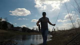 Spring Bass Fishing with Wacky Worms