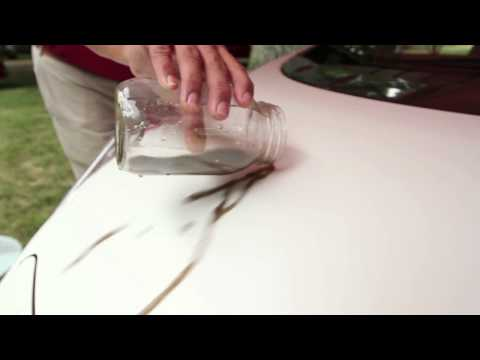 Nissan LEAF with nano paint technology