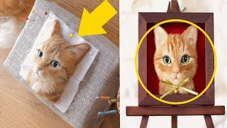 Japanese Artist Makes Realistic 3D Cat Portraits Out Of Felted Wool, And The Result Is amazing
