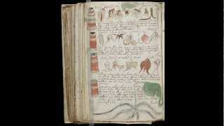 Voynich manuscript. All pages scanned (undeciphered language)