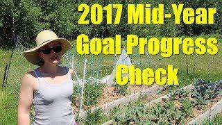 Mid-Year Goal Progress Check