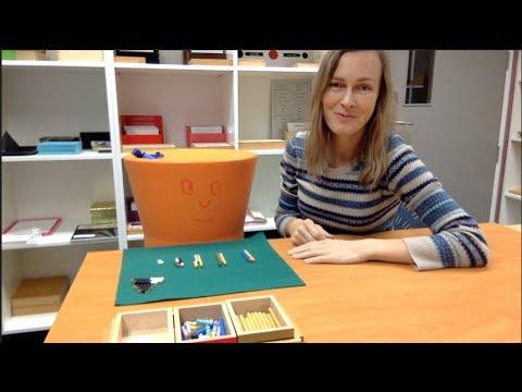 Montessori 3-6, The Golden Snake Addition