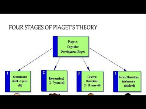 PSTET JEAN PIAGET THEORY IN PUNJABI FOR PSTET - YouTube - piaget's theory