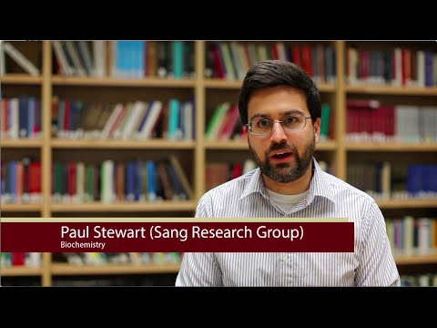 FSU Chemistry Department Interview - Paul Stewart (for Dr. Qing-Xiang Amy Sang)