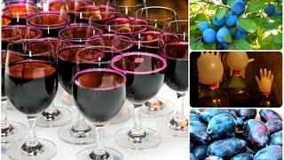 Домашнее вино из слив