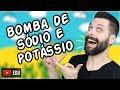 TRANSPORTE ATIVO Bomba De Sódio Na E Potássio K Biologia Com Samuel Cunha mp3