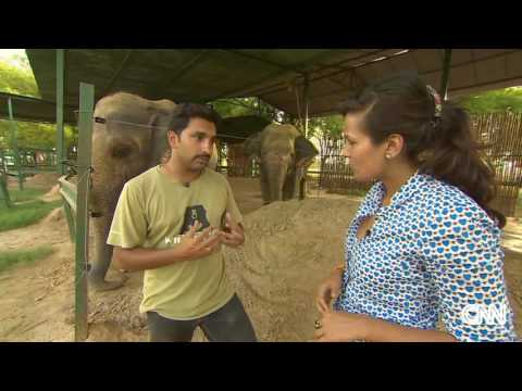 CNN Coverage For Raju's Rescue After 50 years of Abuse