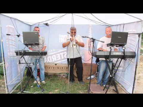 Врадиевские музыканты Свадьба (Врадиевский р-н 29 06 2013)