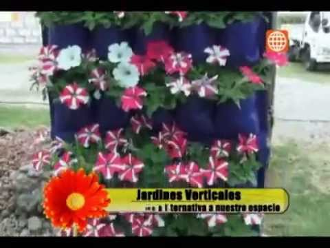 Jesus Pacheco - Jardines verticales - America TV