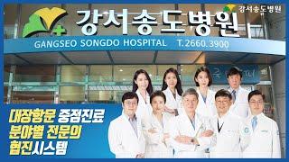 대장항문질환 중점진료, 강서송도병원