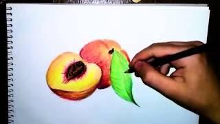 Ucuz kuruboyalarla gerçekci çizim - How to draw peach