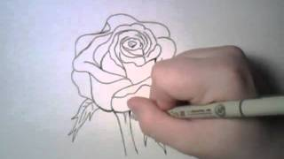 Do you want to learn how to draw realistic pictures??  What is he drawing?