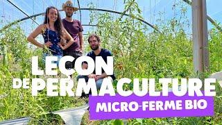 Permaculture : une micro-ferme bio qui veut faire école