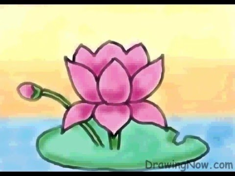 lotus in water plant diagram wiring for house alarm system how to draw a youtube