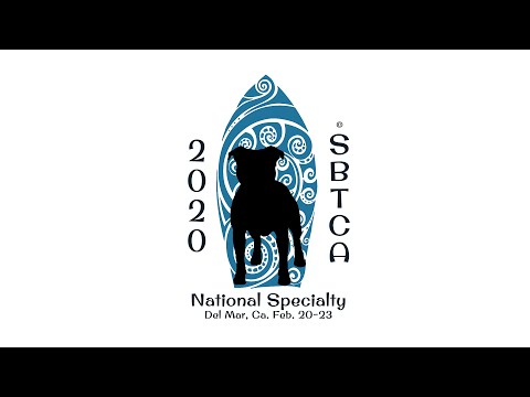 Staffordshire Bull Terrier Club of America 'National Specialty' 2020