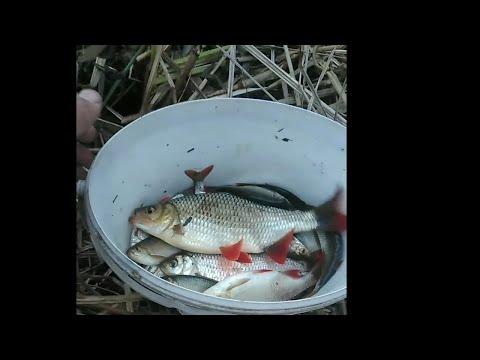 Рыбалка 2020г. в марте На поплавок!! по открытой воде!