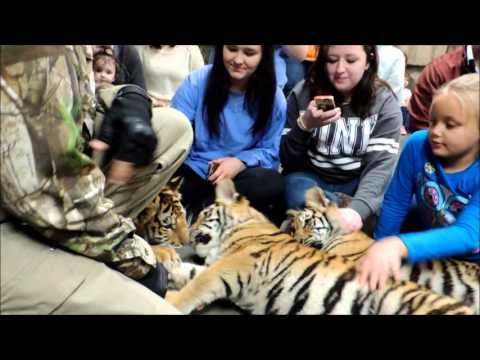 Wildlife In Need 2016