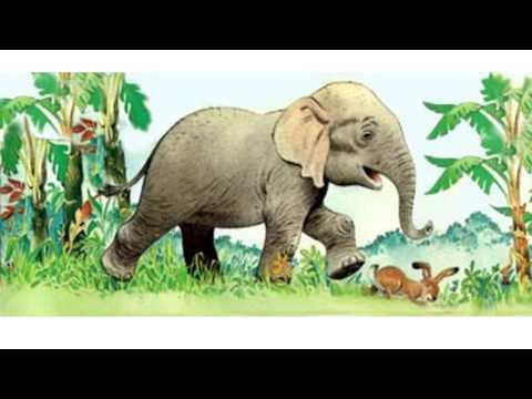 Анекдот слоны и заяц [Yoba Pshhhutit]