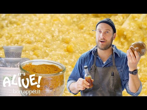 Brad Makes Miso Paste | Its Alive | Bon Appétit