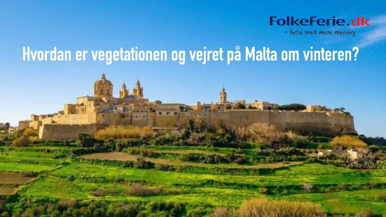 Hvordan er vegetationen og vejret på Malta om vinteren?