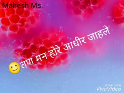 Chand Matla Chand Matla Jiv Guntala Jiv Guntala | WhatsApp Status Video Song