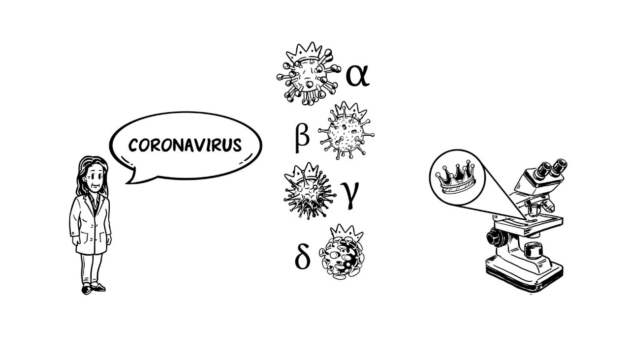 Que Es Coronavirus Youtube