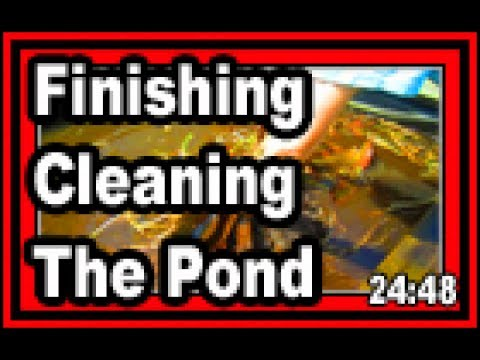 Finishing Cleaning The Pond  - Wisconsin Garden Video Blog 761