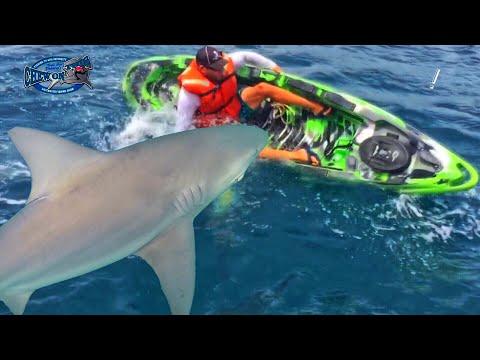 SCARY SHARK FISHING ACCIDENT! – AMAZING FISH SHARKS FLIP KAYAK!!! ++ SHOCKING FIGHT VIDEO