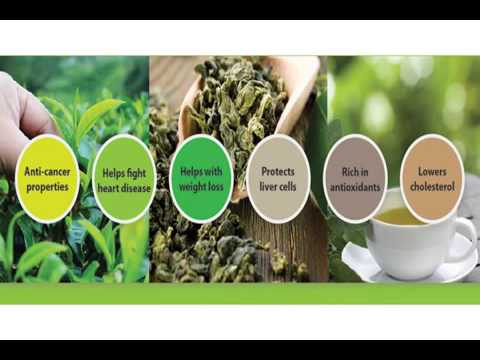Naturalelixirs biz supplies herbal products for Pharma companies in Malaysia