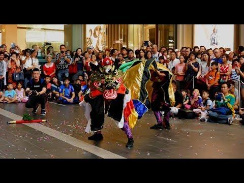 World Dragon & Lion Dance Day 2018 (Malaysia) Unicorn - Xuan Long 世界龙狮节 (马来西亚站)玄龍《麒麟表演》
