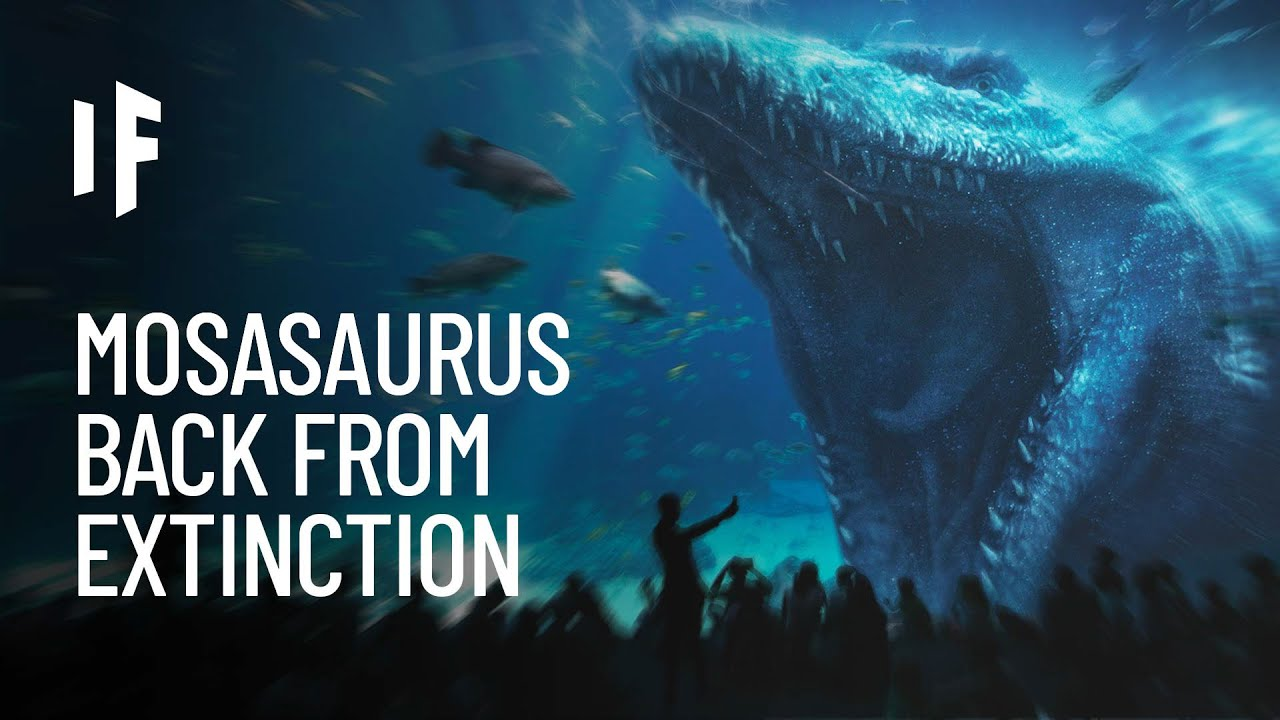 Download What If Mosasaurus Were Still Alive?