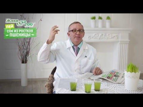 Алоэ вера (Aloe vera) - полезные, лечебные свойства