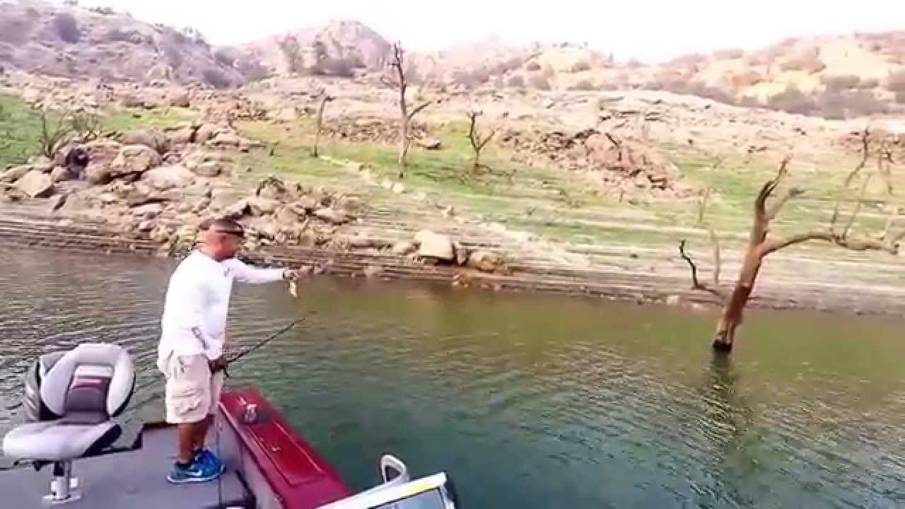 Bass fishing millerton lake pine flat lake youtube for Lake of the pines fishing report