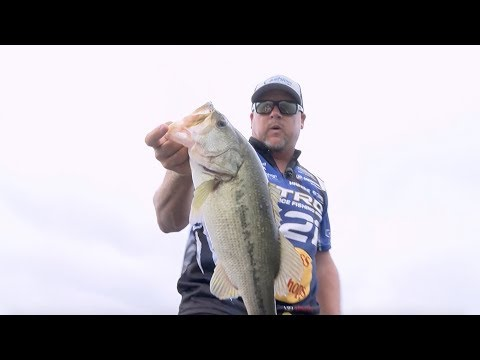 2019 Bassmaster Elite At Lake Guntersville