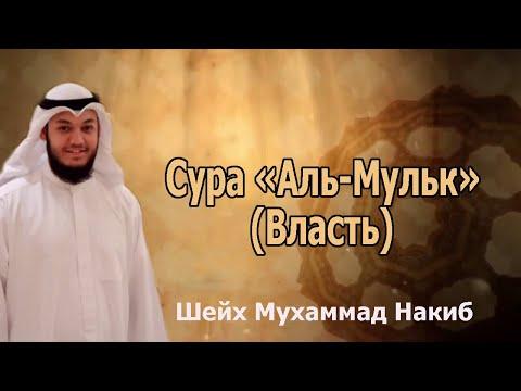 Сура «Аль-Мульк» (Власть).