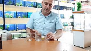 Akvaryum balıklarına kabuksuz artemia nasıl verilmelidir?