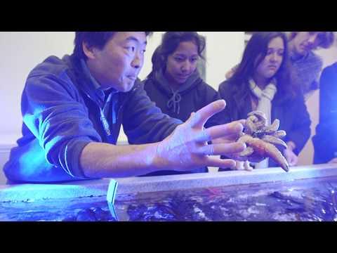 Monterey Bay Academy - Ocean is Life